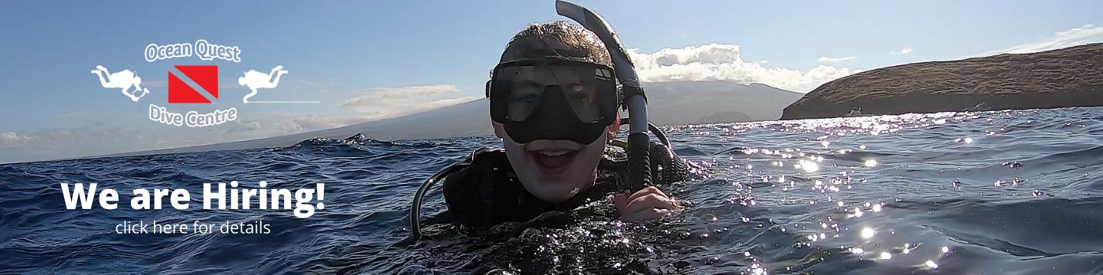ocean_quest_is_hiring_06.21
